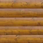 Log wood background — Stock Photo