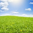 Green meadow under nice sky — Stock Photo