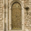 Rustic door — Stock Photo #35864327