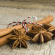 Star anise with cinnamon at christmas time (selective focus) — Stockfoto