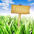 Wooden sign with meadow and blue sky — Stock Photo #37882929