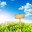 Wooden sign with meadow and blue sky — Stock Photo #37883001