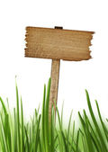 Wood sign with grass isolated on a white background — Stock Photo