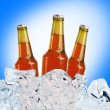 Stock Photo: Beer is in ice