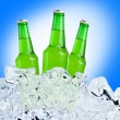 Beer is in ice — Stock Photo #38105311
