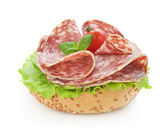 Salami and lettuce — Stock Photo