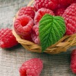 Raspberry — Stock Photo #48312049