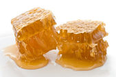 Two honeycombs — Stock Photo