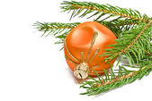 Christmas ball and fir tree branch — Stockfoto