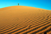 Man on top of a dune — Stock Photo