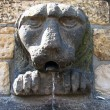 Stone fountain in the shape of a  lion head, Prague — Stock Photo #42252029