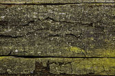 The old plank, a background or texture — Stock Photo
