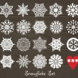Stock Vector: Snowflake set.