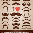 Stock Vector: Moustaches set.
