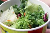 Detail on McDonalds salad — Stock Photo