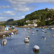 Looe Estuary, Cornwall — Stock Photo #34968031