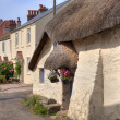 Stock Photo: Thatched cottage, Devon