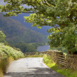 Quiet lane, Cumbria — Stock Photo