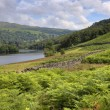 Rydal Water, Cumbria — Stock Photo #35048833