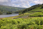 Rydal Water, Cumbria — Stock Photo