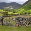 Wasdale Head, Cumbria — Stockfoto