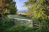 English countryside — Stock Photo