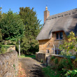 Thatched cottage, Cotswolds — Foto Stock