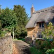 Thatched cottage, Cotswolds — Stockfoto