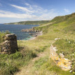 Devon coastline in summer — Stock Photo