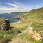 Devon coastline in summer — Stock Photo