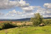 Cotswold landscape — Stock Photo