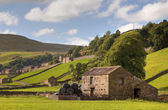 Gunnerside, Yorkshire — Stock Photo
