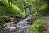 Yorkshire river — Stock Photo