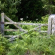 Old farm gate, Cornwall — Stock Photo
