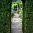 Yew arch, English garden — Stock Photo