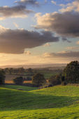 Worcestershire countryside — Stock fotografie