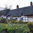 Stock Photo: Anne Hathaway's Cottage
