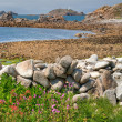 St Martins, Isles of Scilly — Stock Photo