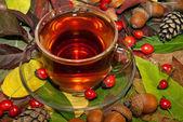 Autumn tea — Stock Photo