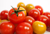 Pomodorini — Foto Stock