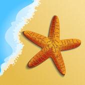 αστερίας στην παραλία在海滩上的海星 — 图库矢量图片