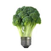 Ampoule de brocoli vert — Photo
