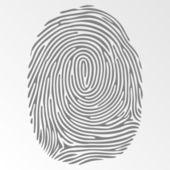 Vector dark fingerprint on gray background — Stock Vector