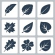 Vector tree leaves icons set — Stock Vector