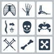 Vector isolated skeleton icons set — Stock Vector