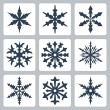 Vector isolated snowflakes icons set — Stock vektor