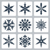 Vector isolated snowflakes icons set — Stock Vector