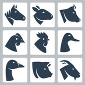 Vector domesticated animals icons set: horse, sheep, cow, chicken, rooster, duck, goose, pig, goat — Stock Vector