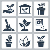 Vector plant growing icons set — Stock Vector