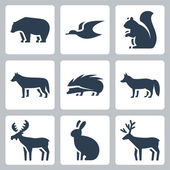Vector forest animals icons set — Stock Vector